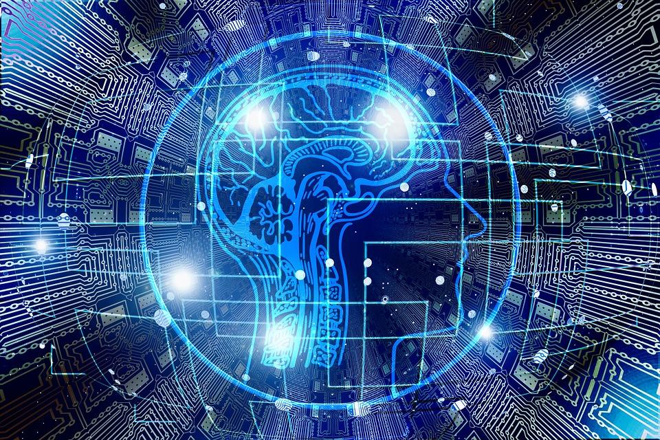 Le travail du cerveau pour la mémoire