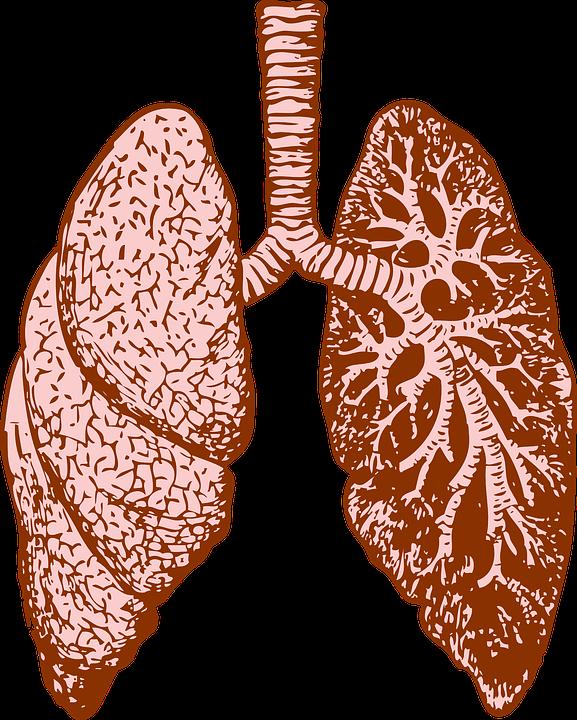 santé poumons