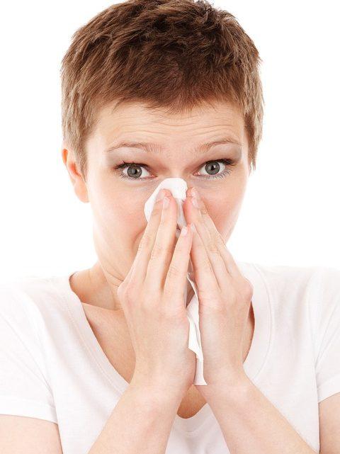 La grippe: au centre des préoccupations majeurs quotidiennes