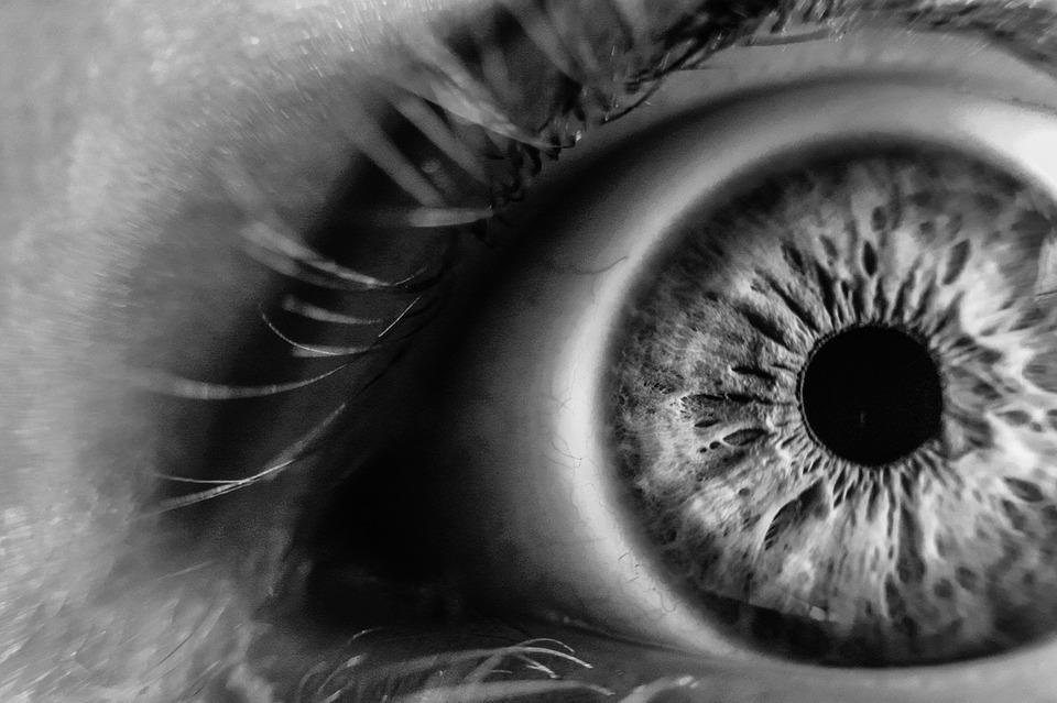 Aniridie: absence d'iris